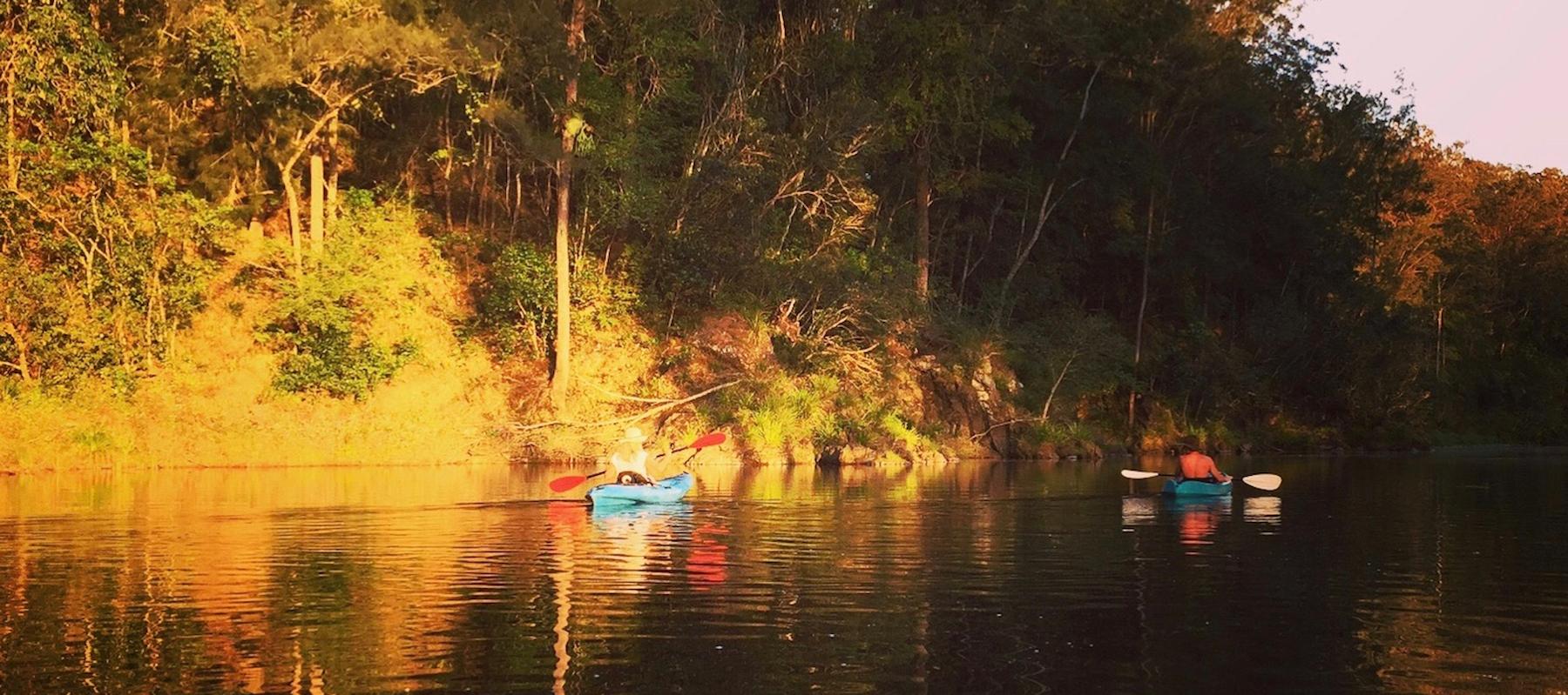 bellinger river kayaking, moo river farm, bellingen activities, bellingen holiday accommodation, bellingen farmstay, moo river farm, bellingen cottage