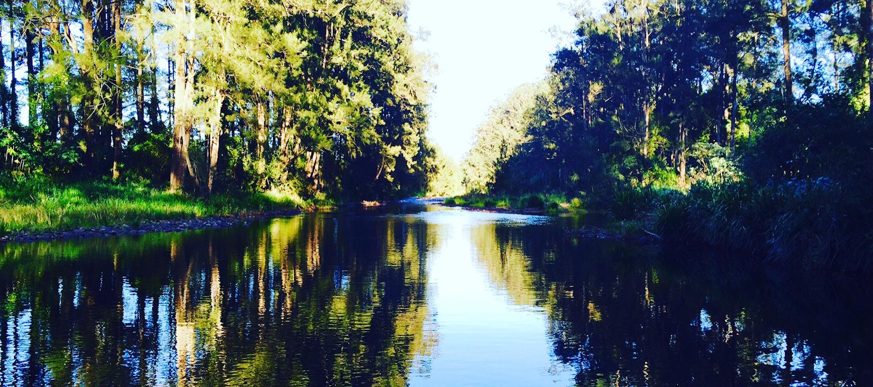 bellingen accommodation, bellingen location shoot, photo shoot, film shoot location, moo river farm, bellinger river, music video location